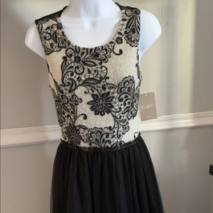 NEW Anthropologie beautiful dress up / down spring